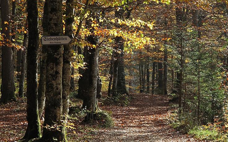 5 Ausflugstipps für ein verborgenes, bayerisches Juwel