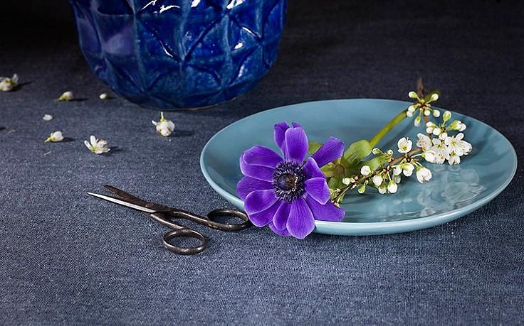 Sinnliches Farbenspiel mit bunten Blumen