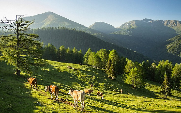 5 Tipps für die Nockberge: Zu Besuch in einer einzigartigen Landschaft