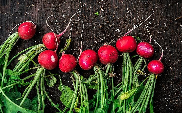 Diese Gemüsesorten haben im April Saison