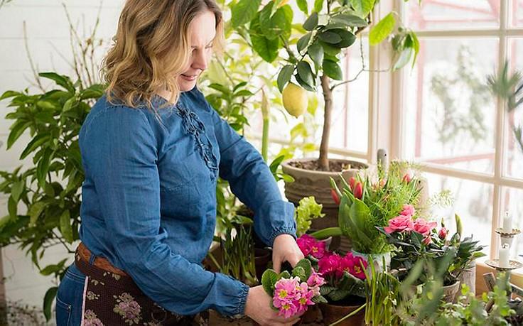 September-Gartentipp Nr. 3: Überwinterung für Kübelpflanzen