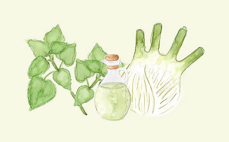 Grüne Kosmetik zum Selbermachen: Schönheitsöl