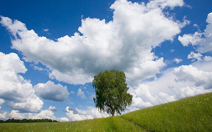 Naturphänomene: Was Wolken über das Wetter verraten