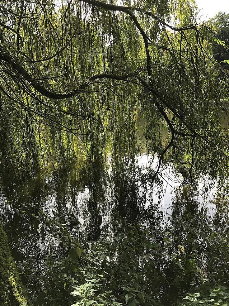 Bilder-Galerie: Landschaftsspiegelungen aus Deutschland