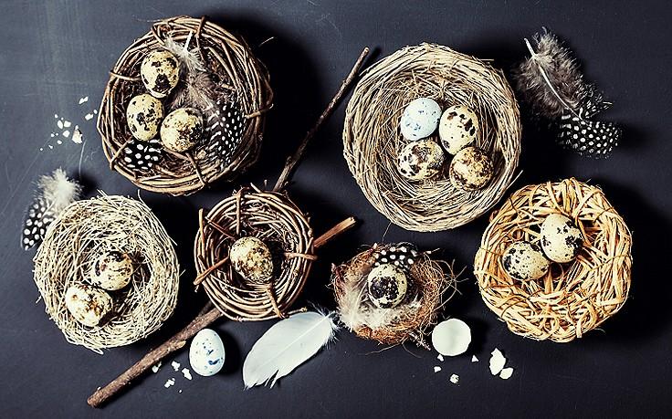 Oster-Deko mit Wachteleiern