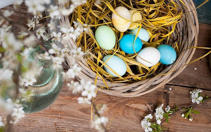 Bilder-Galerie: schöne Oster-Nester