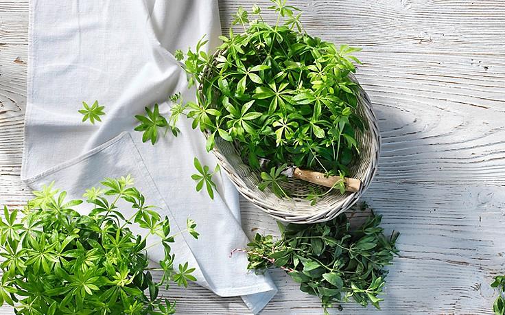 7 Muntermacher-Tipps gegen die Frühjahrsmüdigkeit