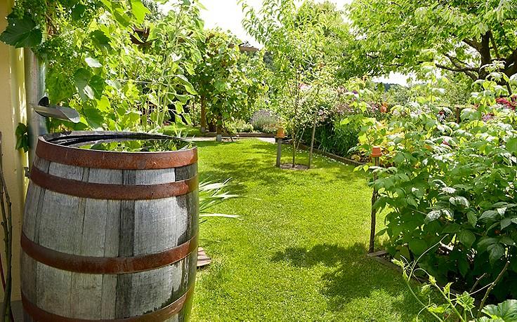 Mai-Gartentipp Nr. 2: Wie man im Garten Wasser spart