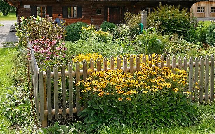 Diese Blumen dürfen im klassischen Bauerngarten nicht fehlen