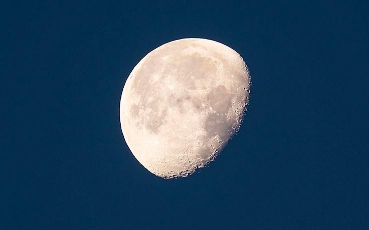 4. - 10. Juni: Der Servus-Mondkalender für Haus und Garten