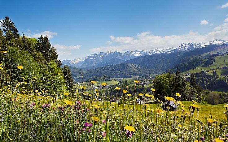 4 Ausflugstipps für den Bregenzerwald