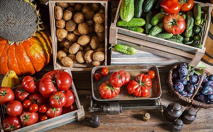 Ordnung im Gemüse- und Obstlager