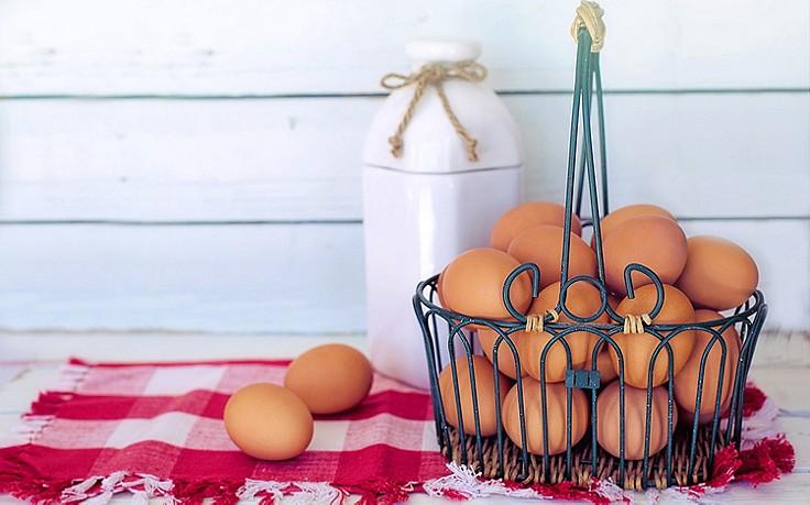 9 Alternativen für Eier