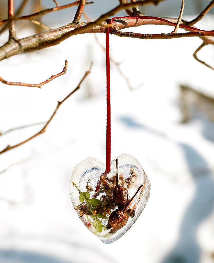 zauberhafte deko f r den wintergarten. Black Bedroom Furniture Sets. Home Design Ideas