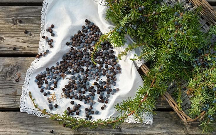 Würzige 7-Alpenkräuter-Mischung