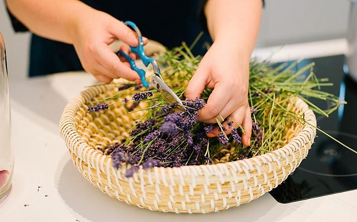 Duftendes Lavendel-Waschmittel für helle Wäsche