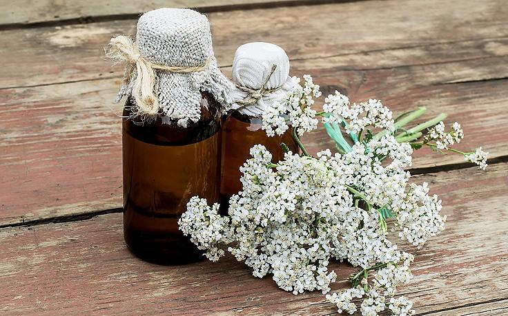 Blütensprudel für die Darmflora