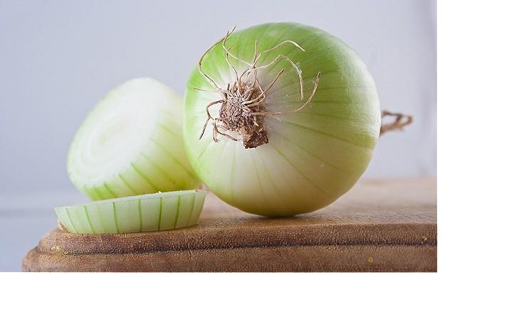 Heilende Honig-Zwiebel-Paste