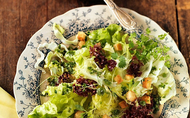 Kräuter-Blattsalat mit Kerbel-Croutons