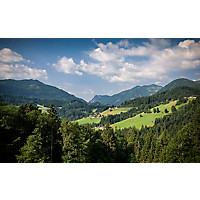 Wandern: 3 Wanderungen zu den Schmetterlingen im Brandenbergtal