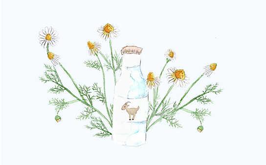 Grüne Kosmetik zum Selbermachen: Kinderbad mit Ziegenmilch und Haferflocken