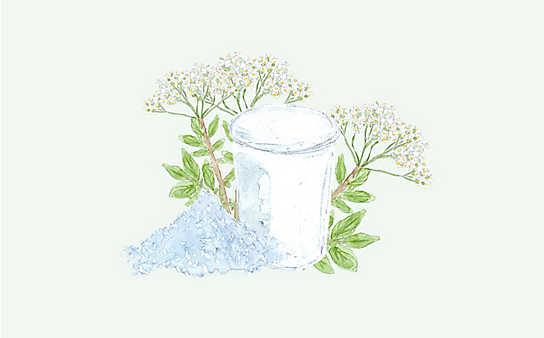 Grüne Kosmetik zum Selbermachen: Erkältungsbad mit Mädesüß