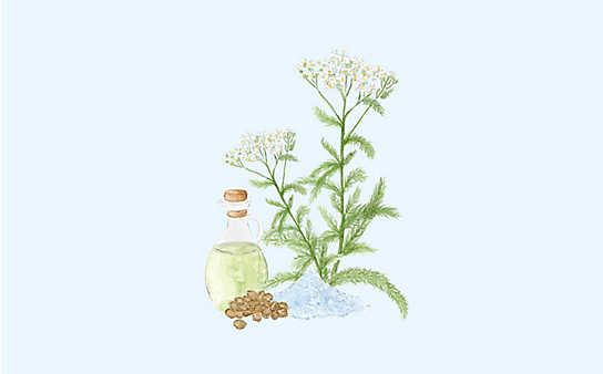 Grüne Kosmetik zum Selbermachen: stärkendes Nagelöl