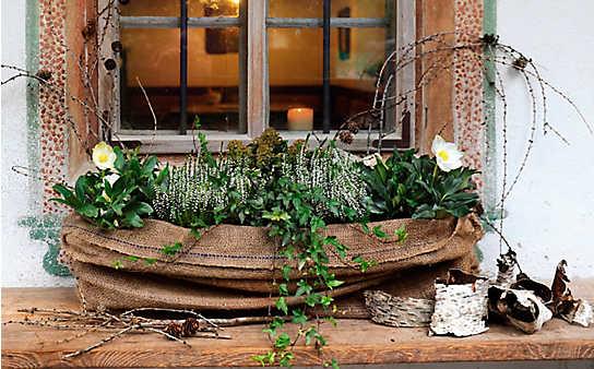 Winterlicher Balkon-Schmuck