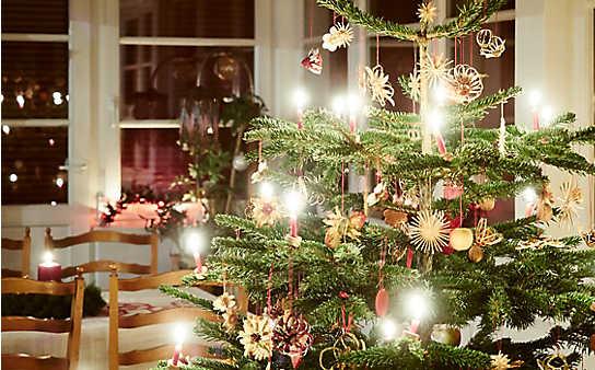 10 Weihnachtsmythen und Brauchtümer leicht erklärt