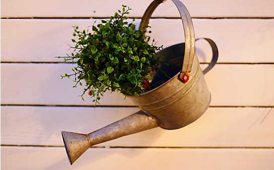 So bewässern Sie Ihre Pflanzen im Urlaub