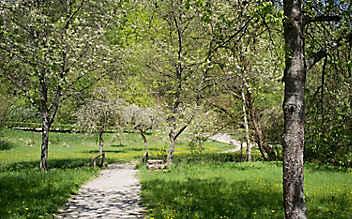 Ausflug in den Ries: Durch die Landschaft, die vom Himmel fiel