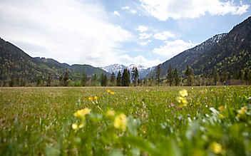 Ausflugstipps fürs Graswangtal