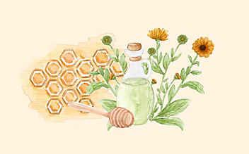 Grüne Kosmetik zum Selbermachen: heilende Ringelblumensalbe