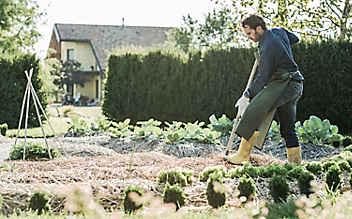 Käfers Gartentipps: richtig mulchen