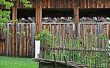 Die ideale Erde für Balkonblumen