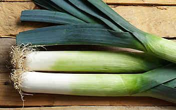 Diese Gemüsesorten haben im Jänner Saison