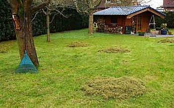 September-Gartentipp Nr. 1: Die letzte Pflege des Rasens vor dem Winter