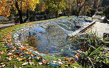 Gartenteich im Herbst säubern