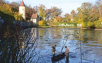 Dinkelsbühler Fischernte: 27. Oktober bis 5. November