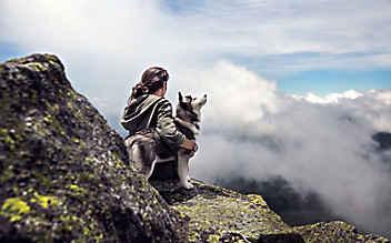 Hundefreundliche Wander-Hütten