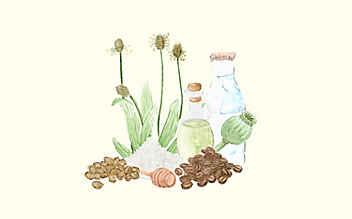 Grüne Kosmetik zum Selbermachen: 5 natürliche Haut-Peelings