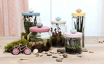 Mini-Garten fürs Fensterbrett