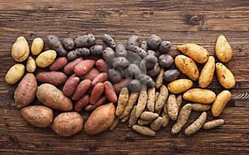 Drei Fakten zu Kartoffeln