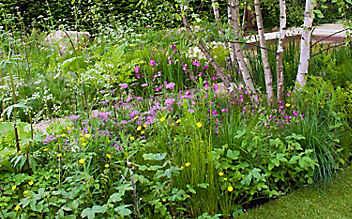 Astrologie im Garten: Der Luftgarten