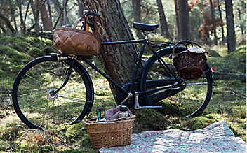 Drei versteckte Picknick-Plätze in Wien-Umgebung