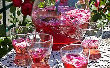 7 Rezepte für eine gelungene Sommer-Bowle
