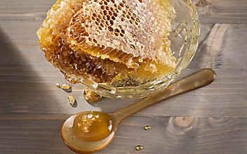 Honig heilt Wunden