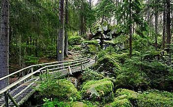 5 Ausflugstipps für das nördliche Waldviertel