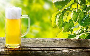 5 Bier-Produkte, die keinen Schwips verursachen
