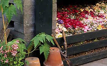 Diese Abfälle dürfen nicht auf den Komposthaufen